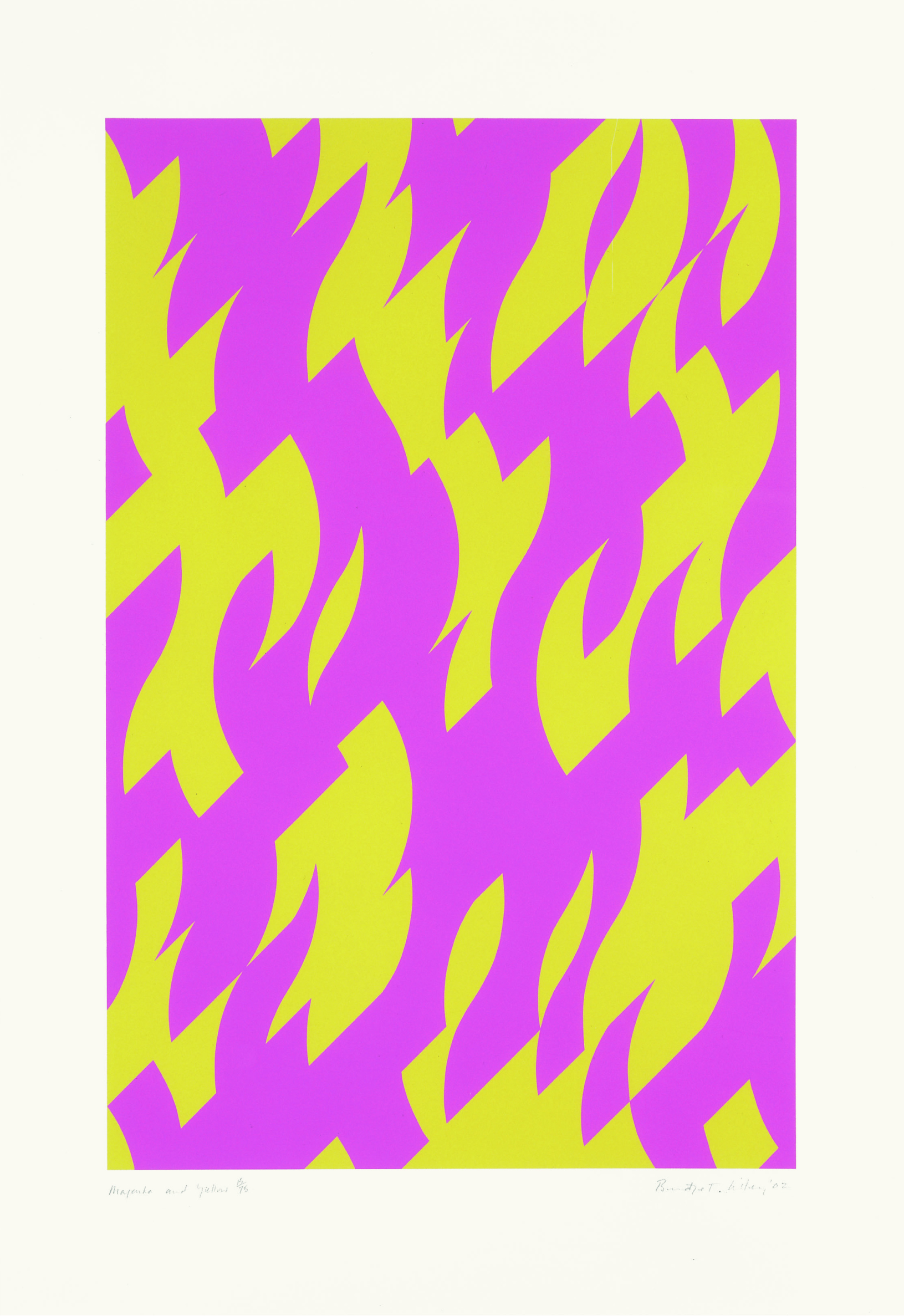 Magenta and Yellow 2002.jpg