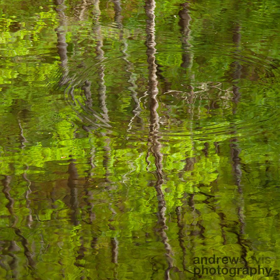 Ripples, River Teign, Dartmoor, Devon