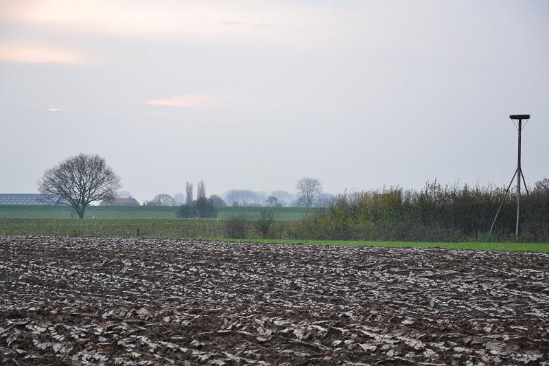 platteland-bommelerwaard-zuidwest-nederhemert-zuid (1).jpg