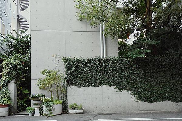 tadao-ando-house-1.jpg