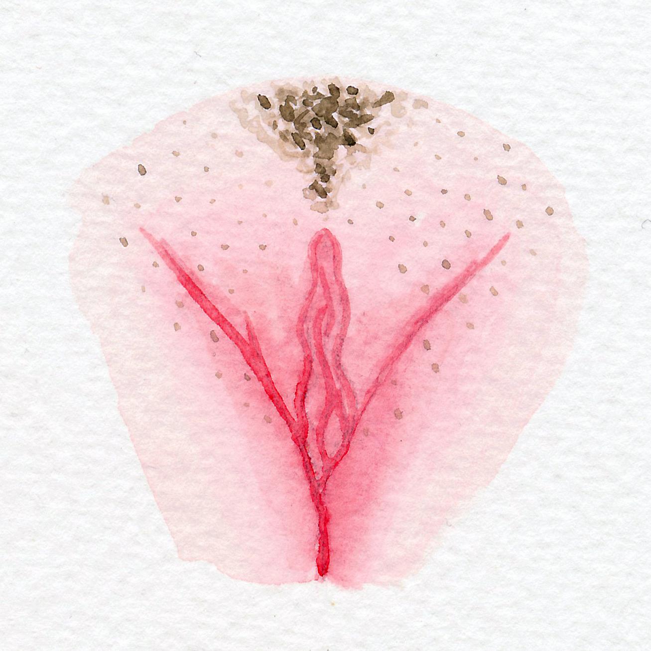 The Vulva Gallery - Vulva Portrait #22.jpg