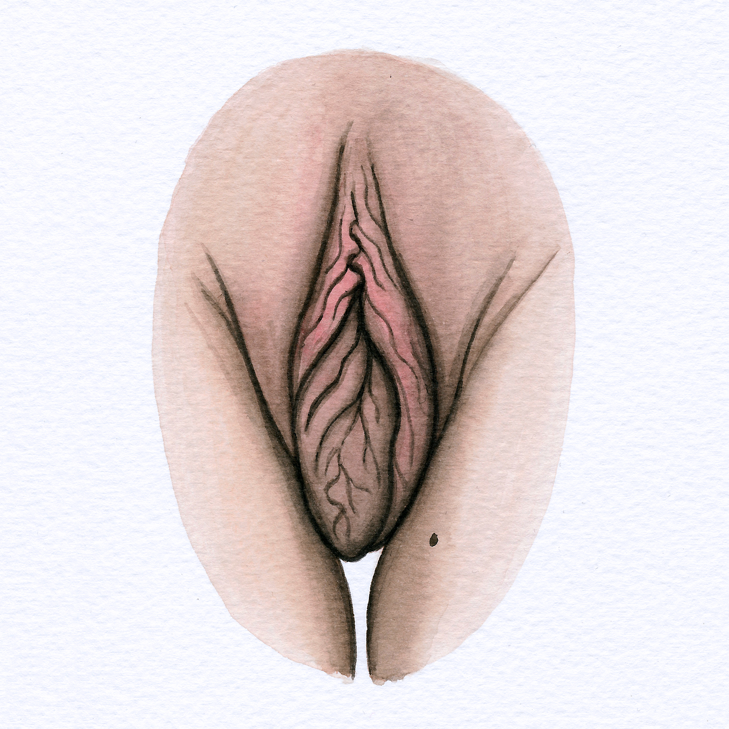 The Vulva Gallery - Vulva Portrait #14 (square).jpg