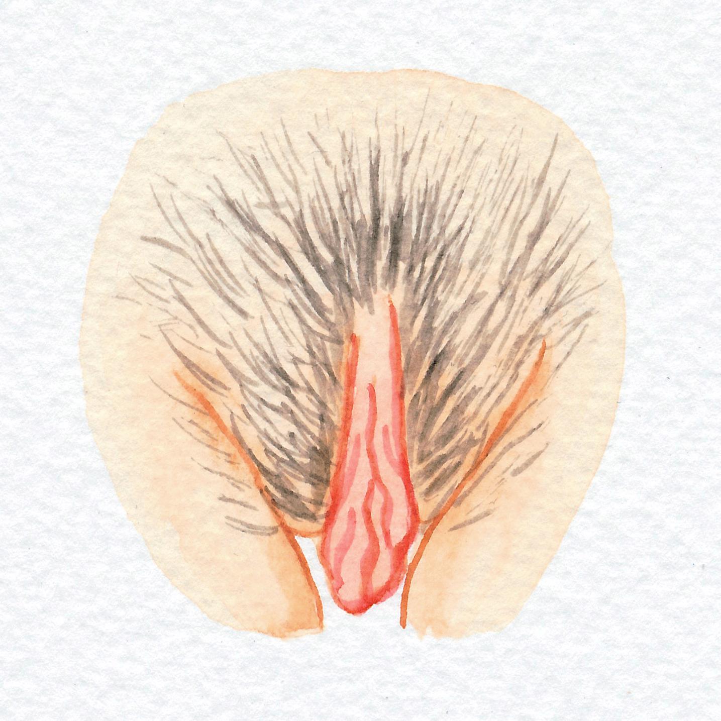 The Vulva Gallery - Vulva Portrait #5.jpg