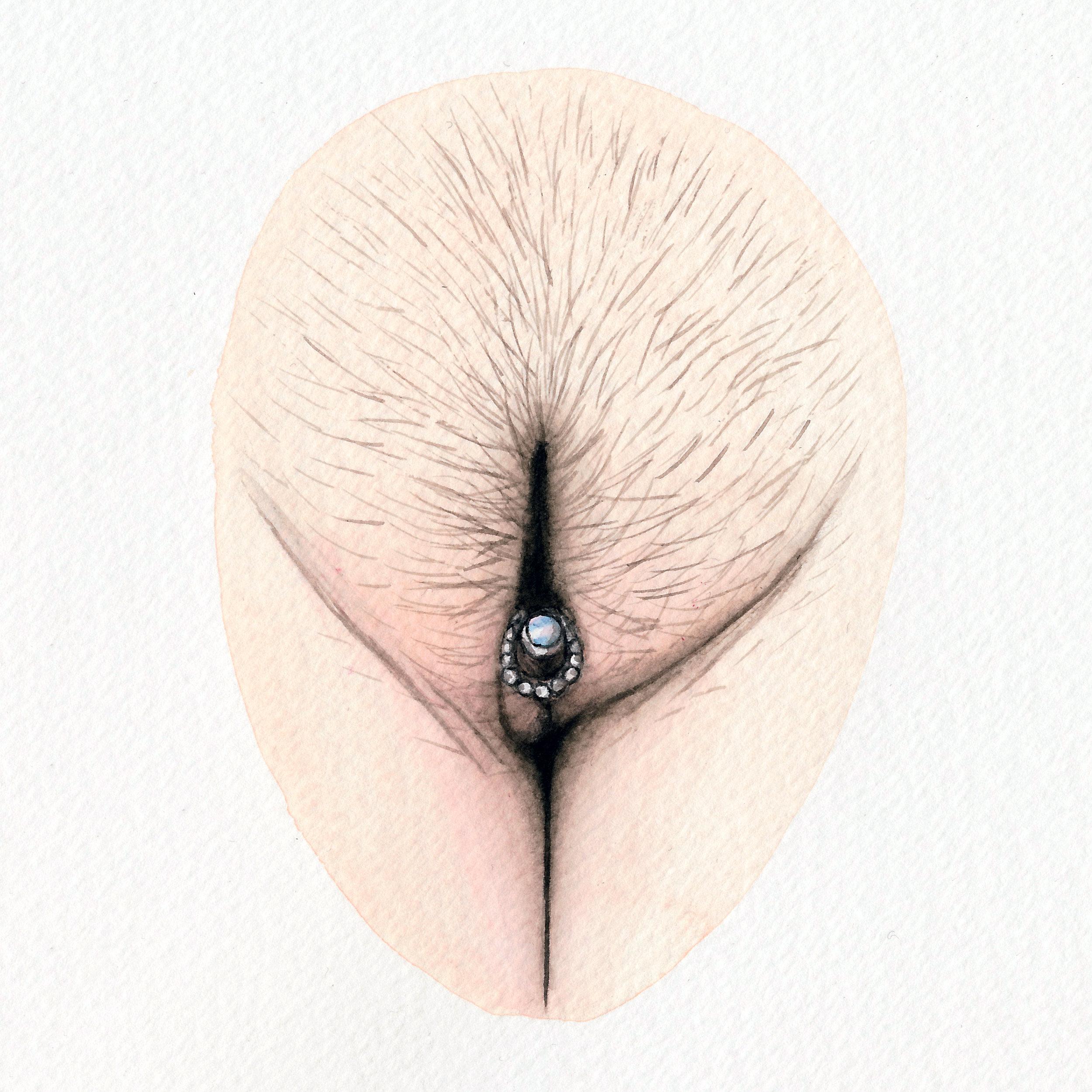 The Vulva Gallery - Vulva Portrait #161 (s).jpg