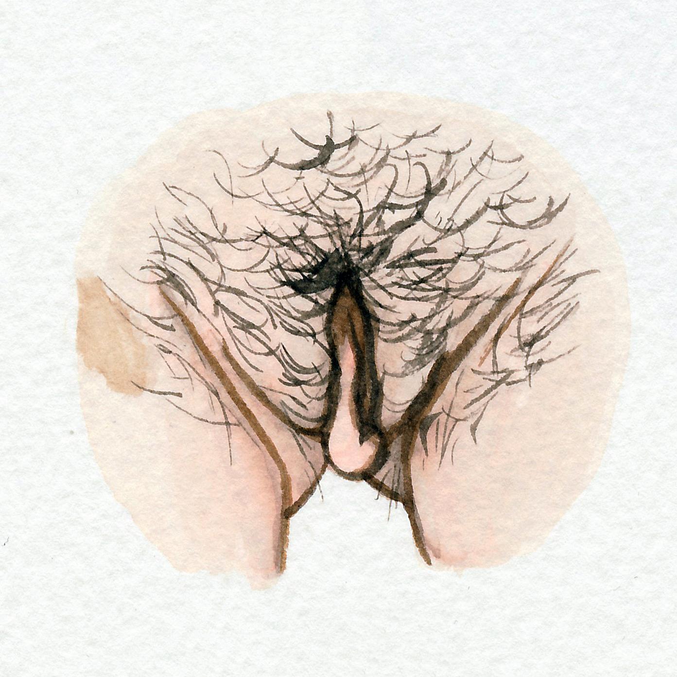 The Vulva Gallery - Vulva Portrait #67.jpg