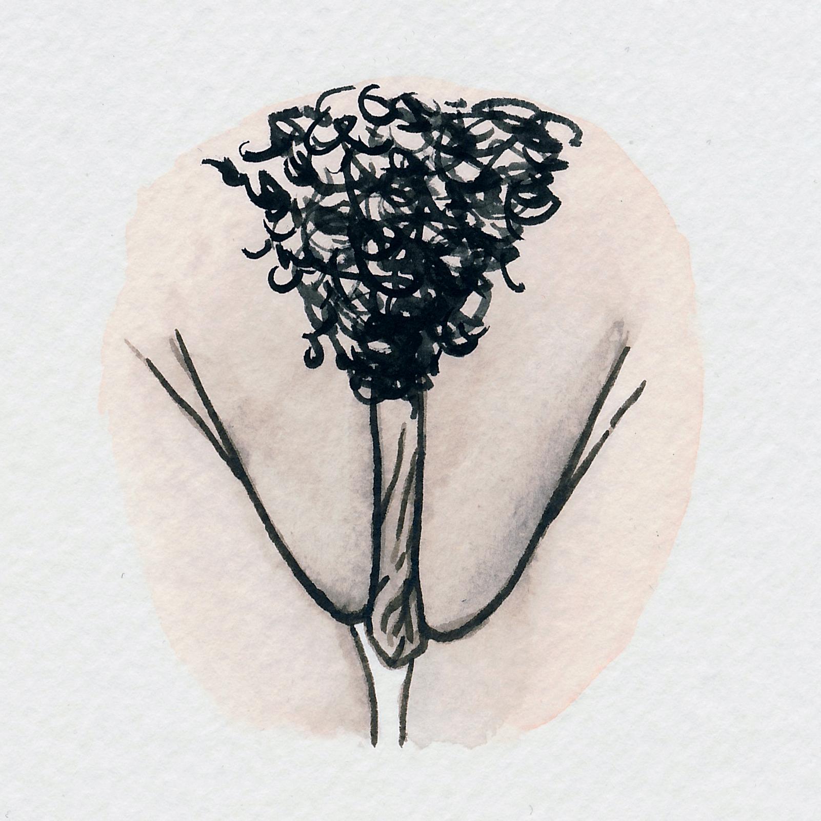 The Vulva Gallery - Vulva Portrait #115.jpg