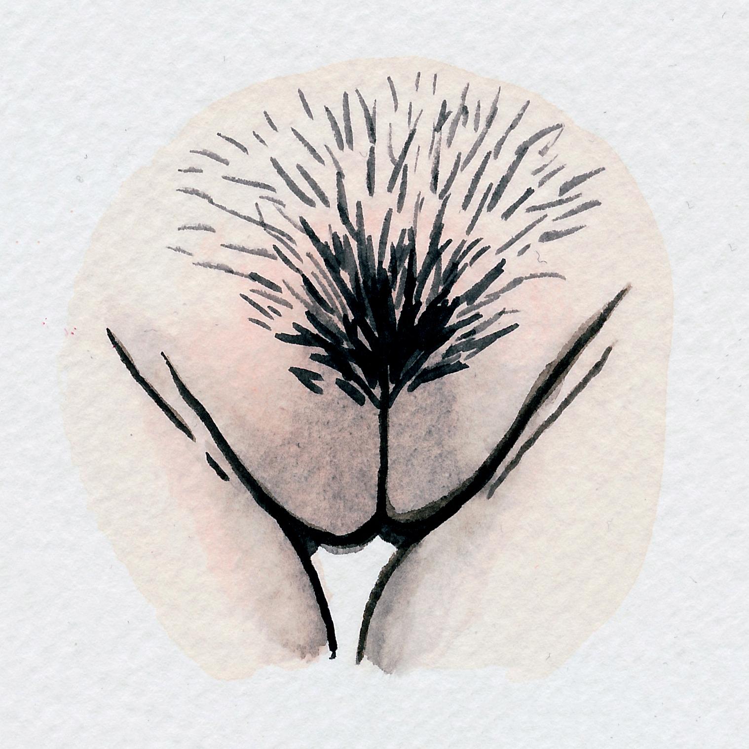 The Vulva Gallery - Vulva Portrait #102.jpg