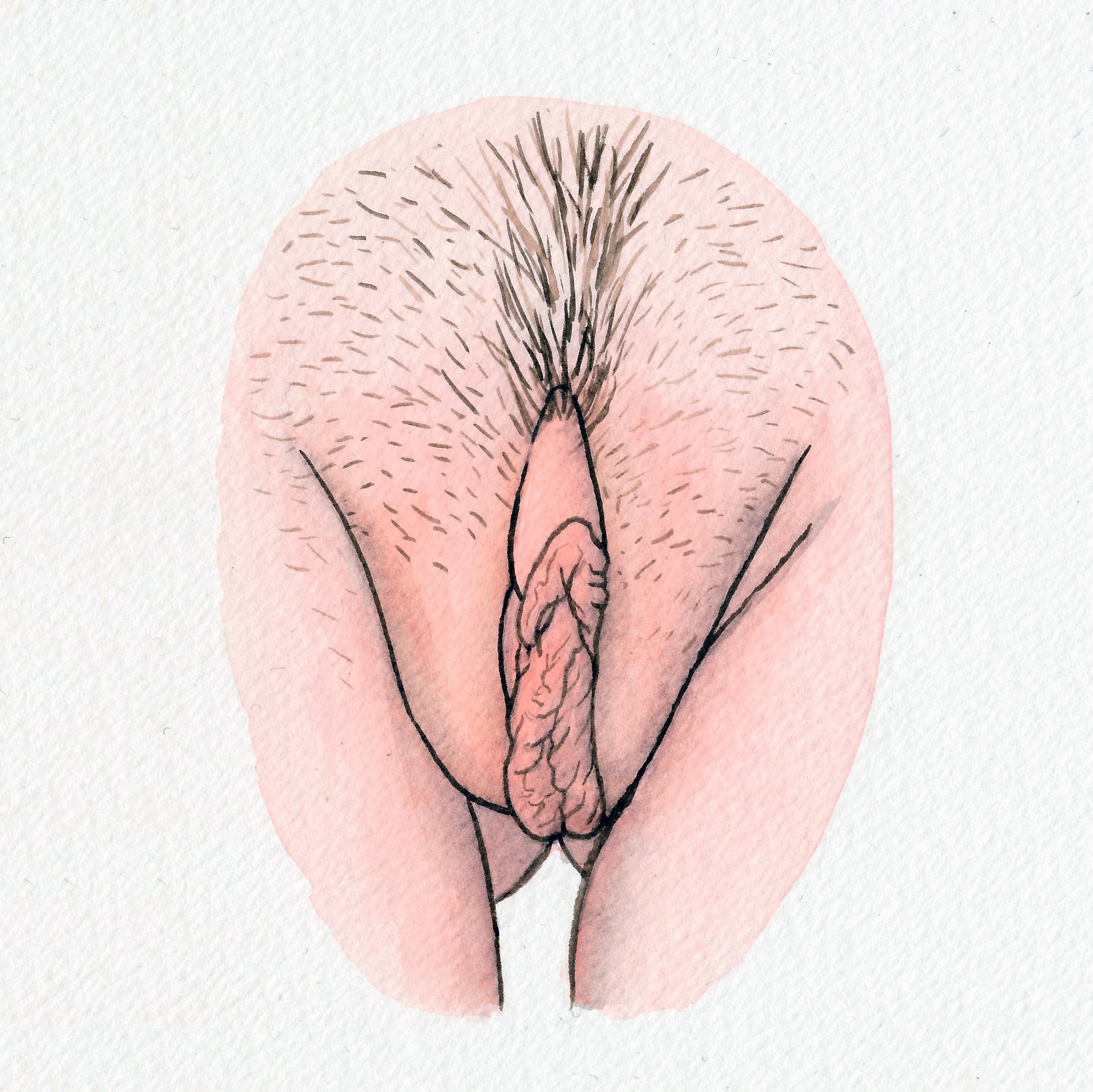 The Vulva Gallery - Vulva Portrait #118 (s).jpg