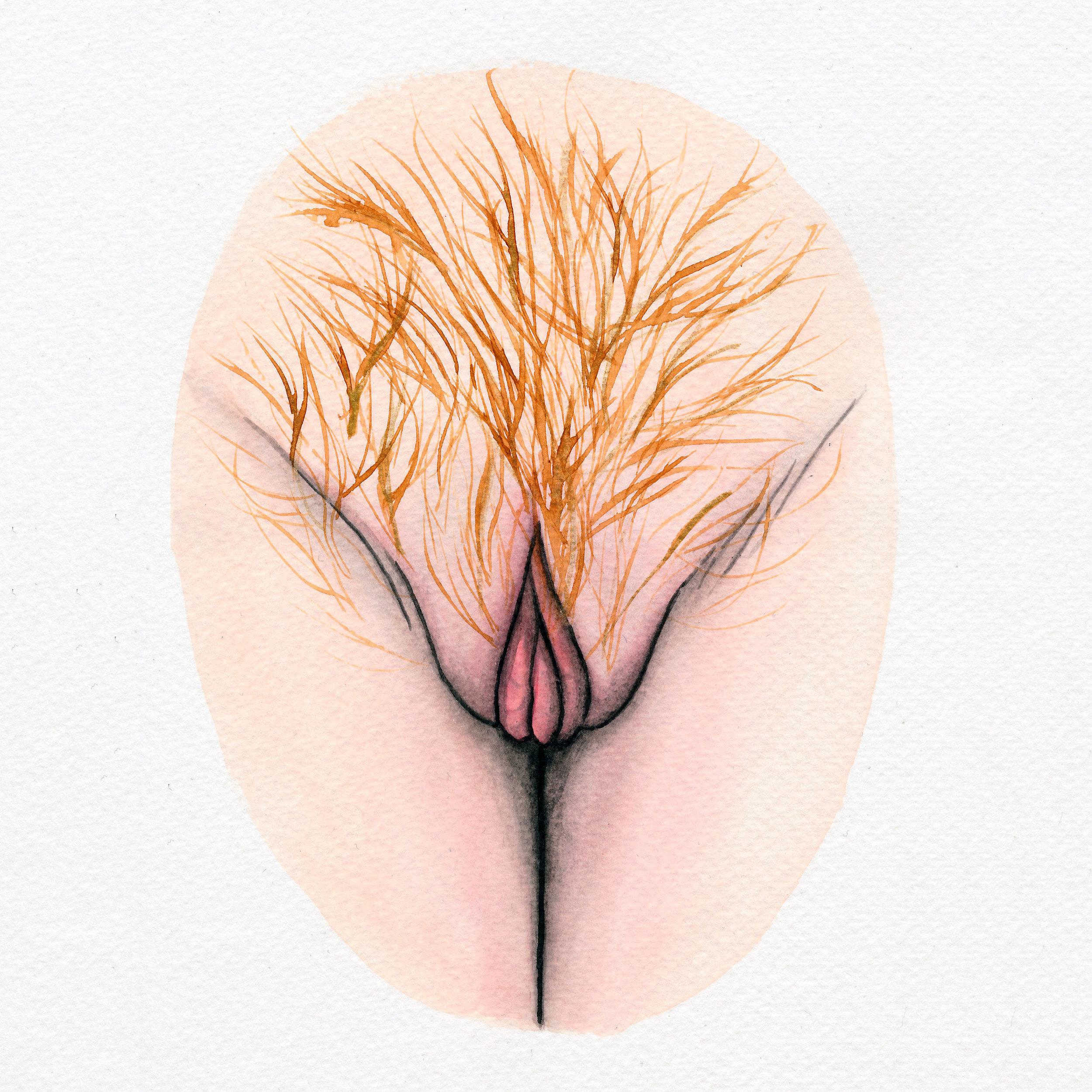 The Vulva Gallery - Vulva Portrait #155 (s).jpg