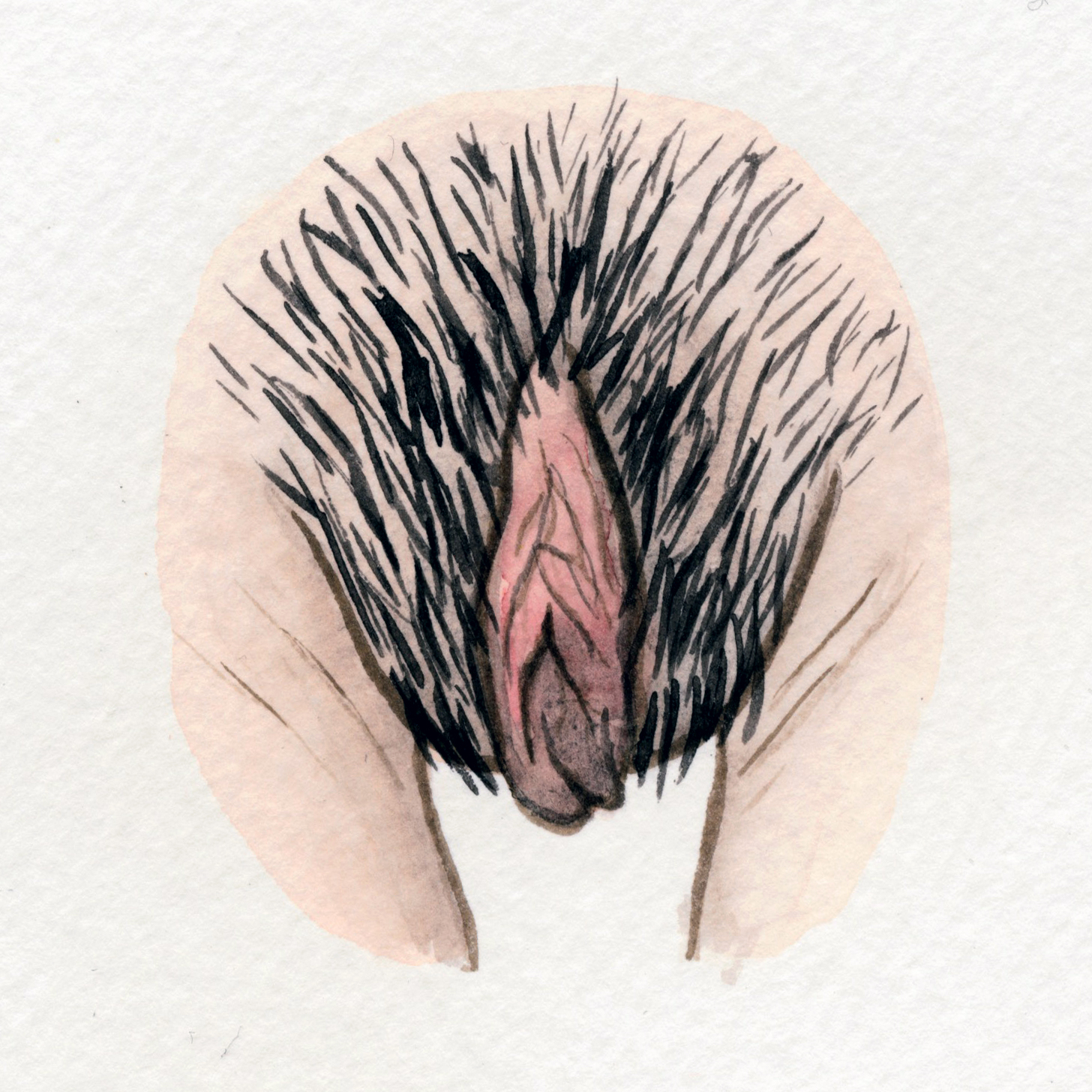 The Vulva Gallery - Vulva Portrait #138.jpg