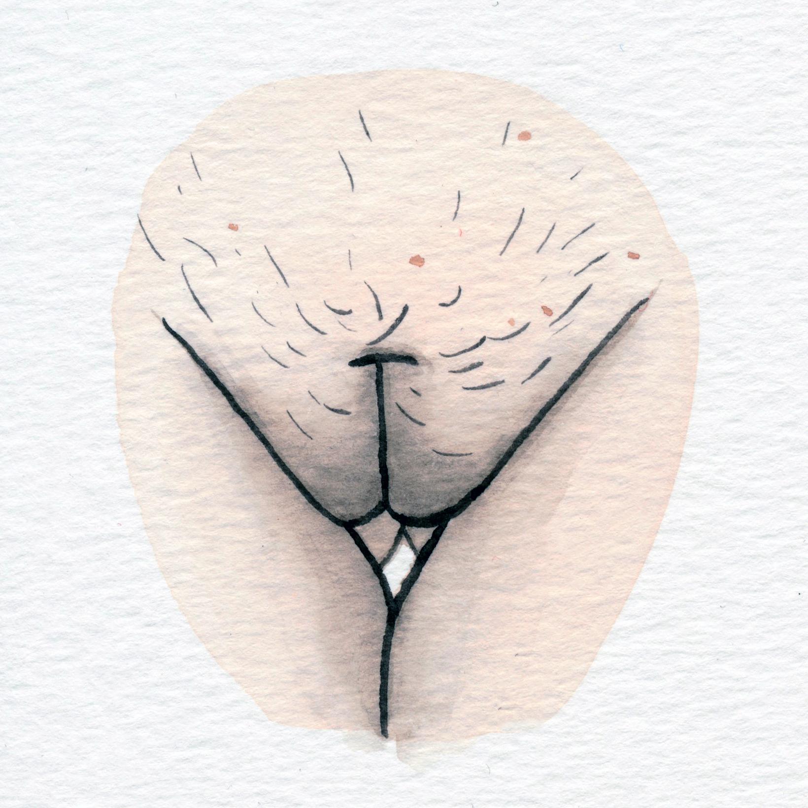 The Vulva Gallery - Vulva Portrait #173.jpg