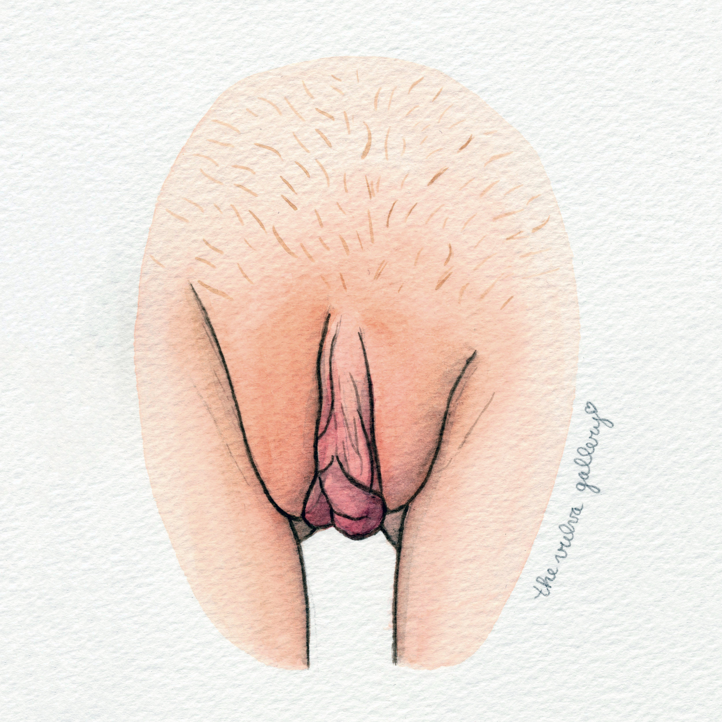 The Vulva Gallery - Vulva Portrait #183 (s).jpg