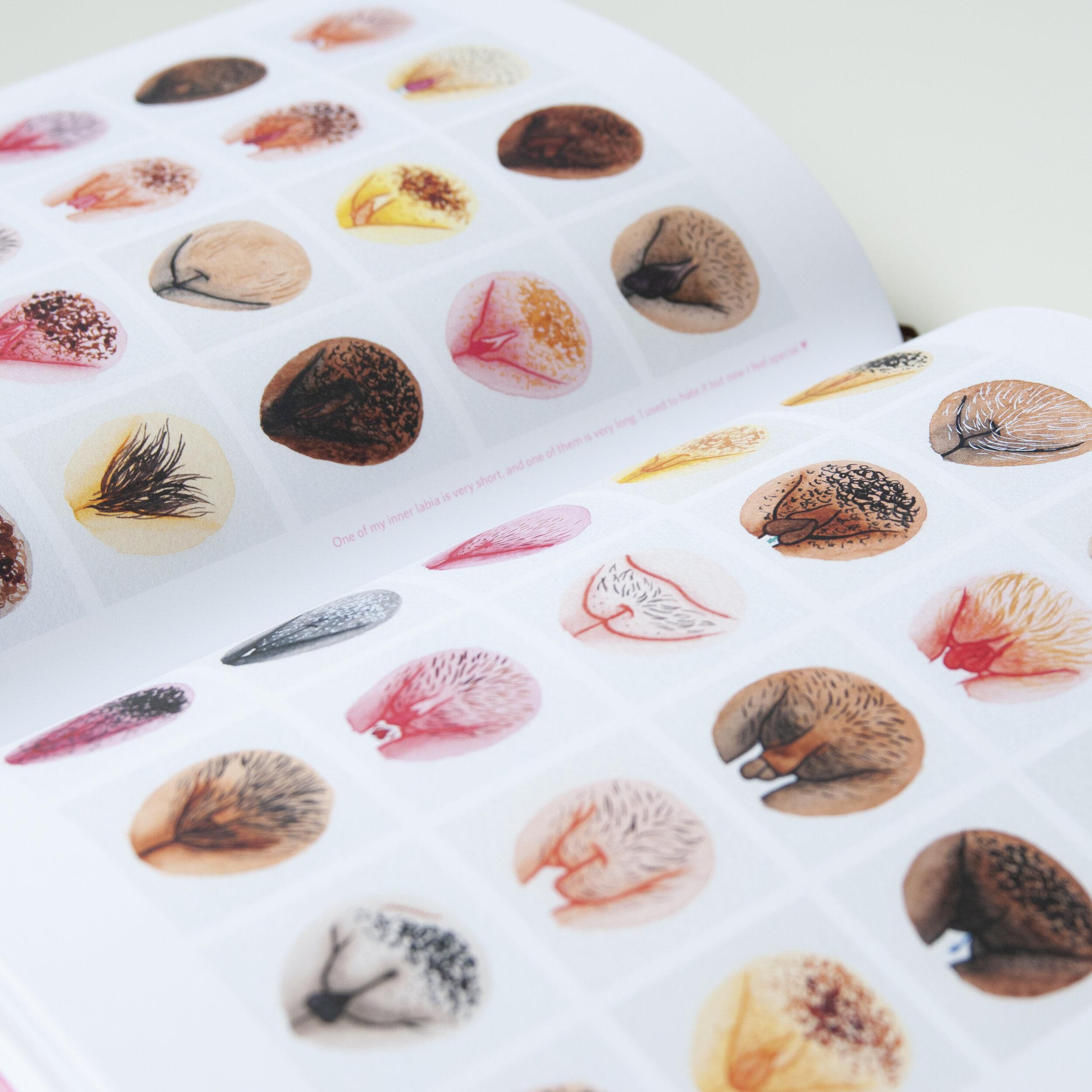 A Celebration of Vulva Diversity - A book by The Vulva
