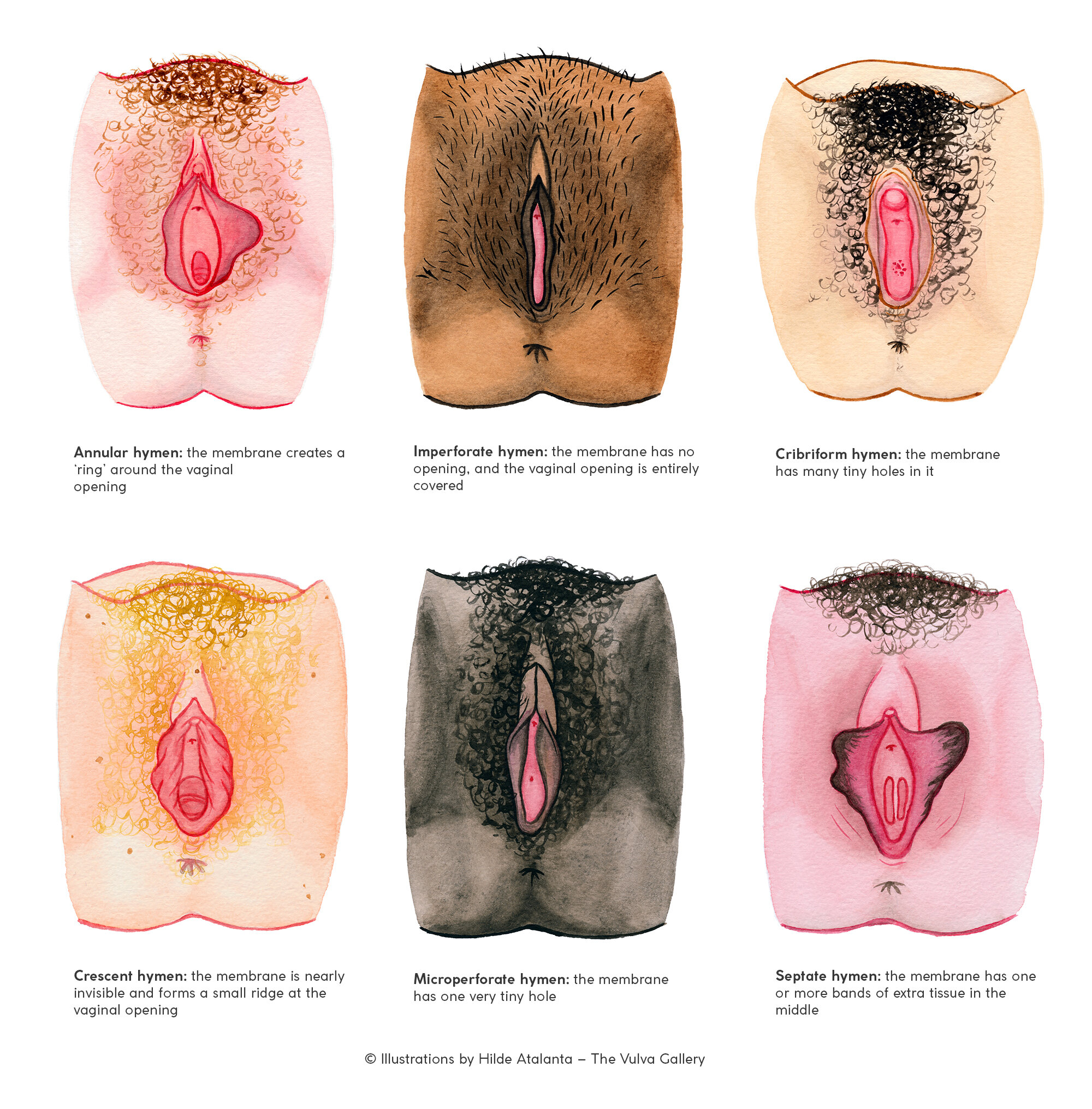 Types of pussy many Yahoo is