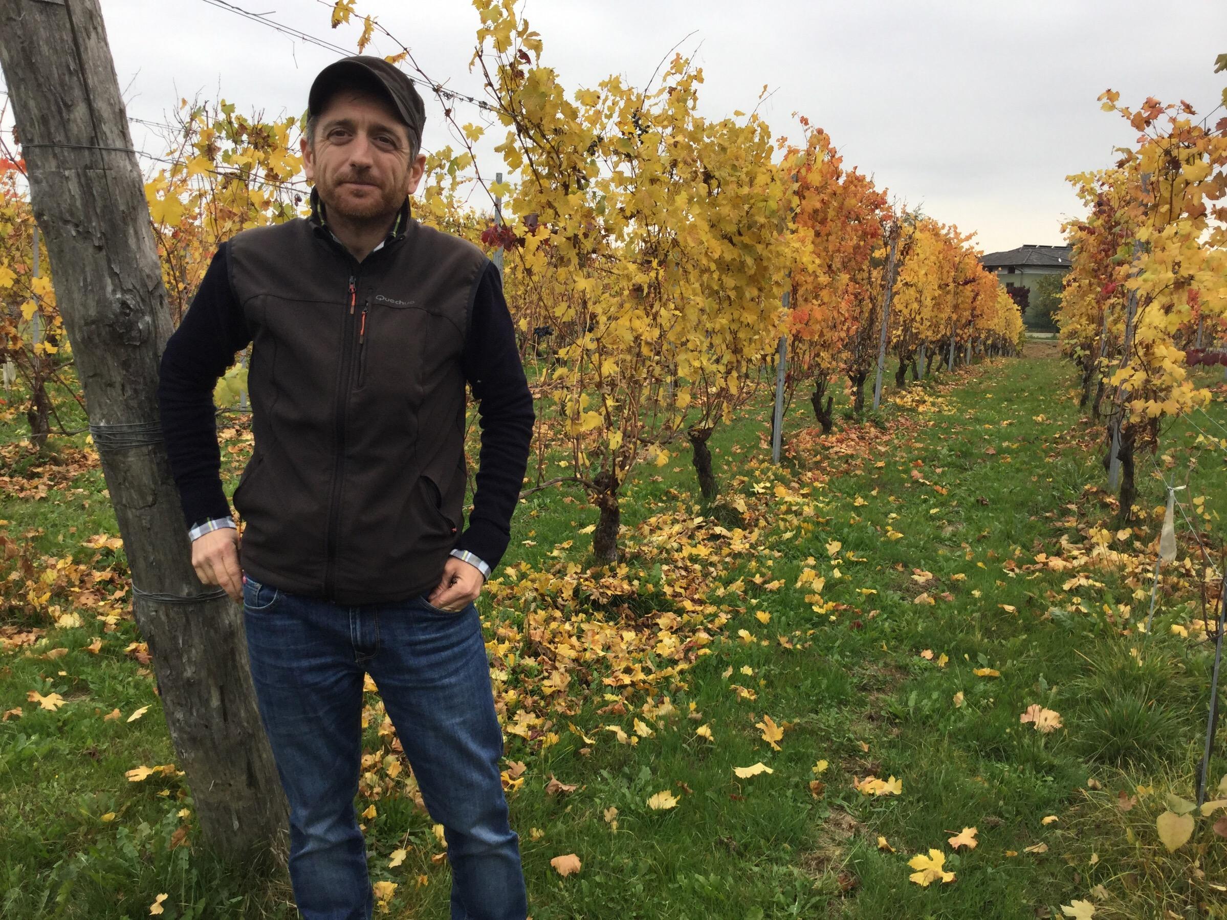 Fabio Zambolin in Vineyard