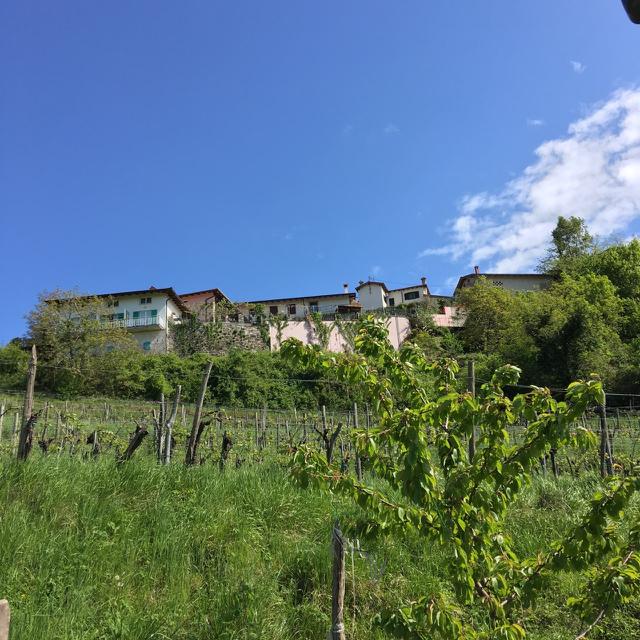 Stekar estate