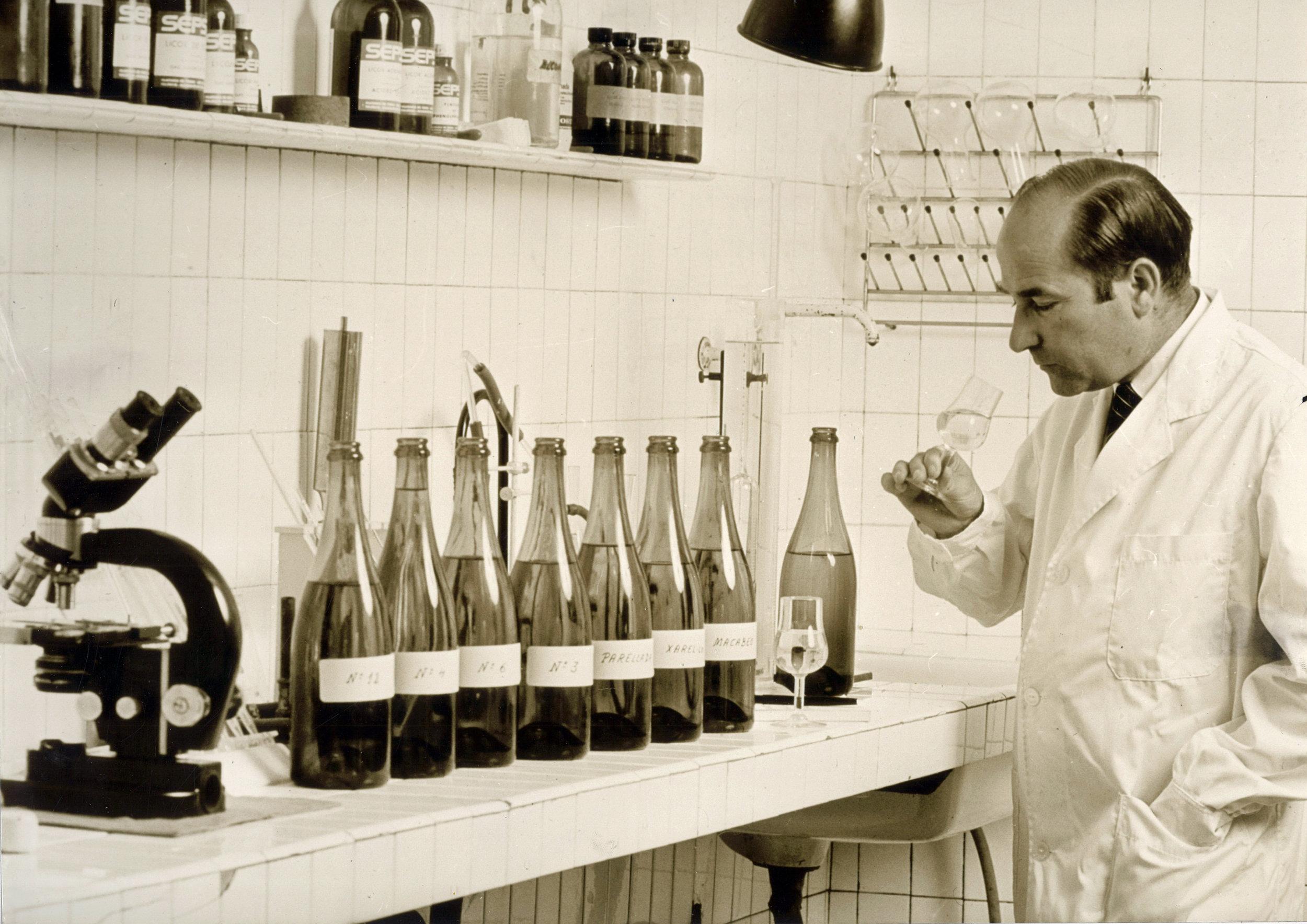 Agustí Torelló Mata in the lab.