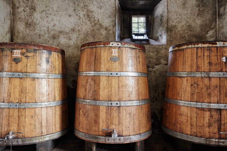 Tronconic Oak Barrels
