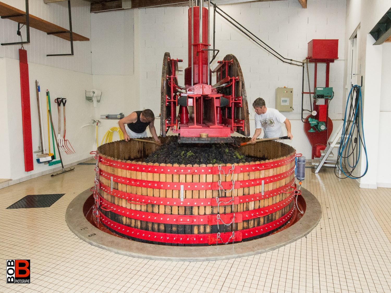 Champagne Basket Press