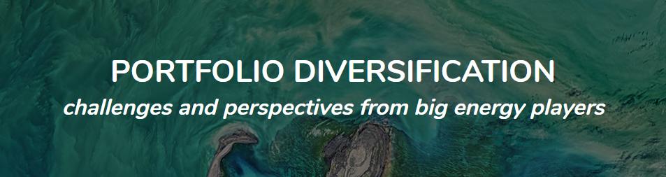 Portfolio Diversification.PNG