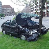 """""""That tree just darted out in front of me!"""""""