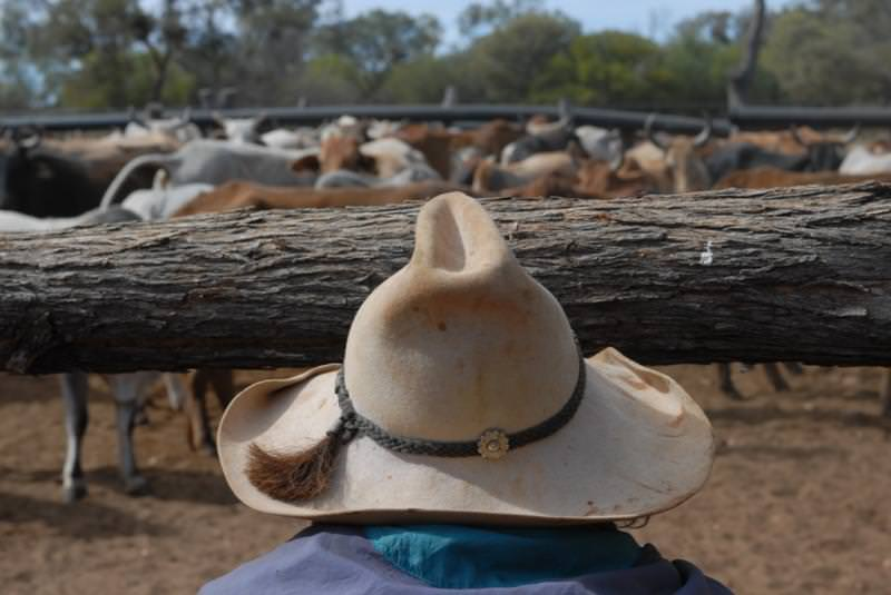 Mervyn Street from behind at the cattle yards near Well 8. Canning Stock Route bush trip, July 2007. Photographer: Tim Acker ©FORM.net.au