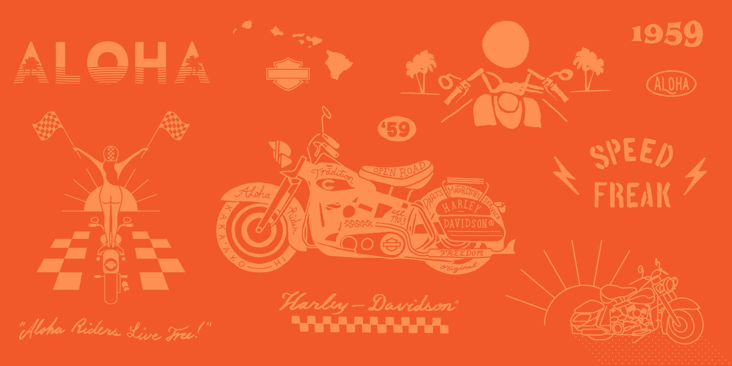 HarleyScratchPage.jpg