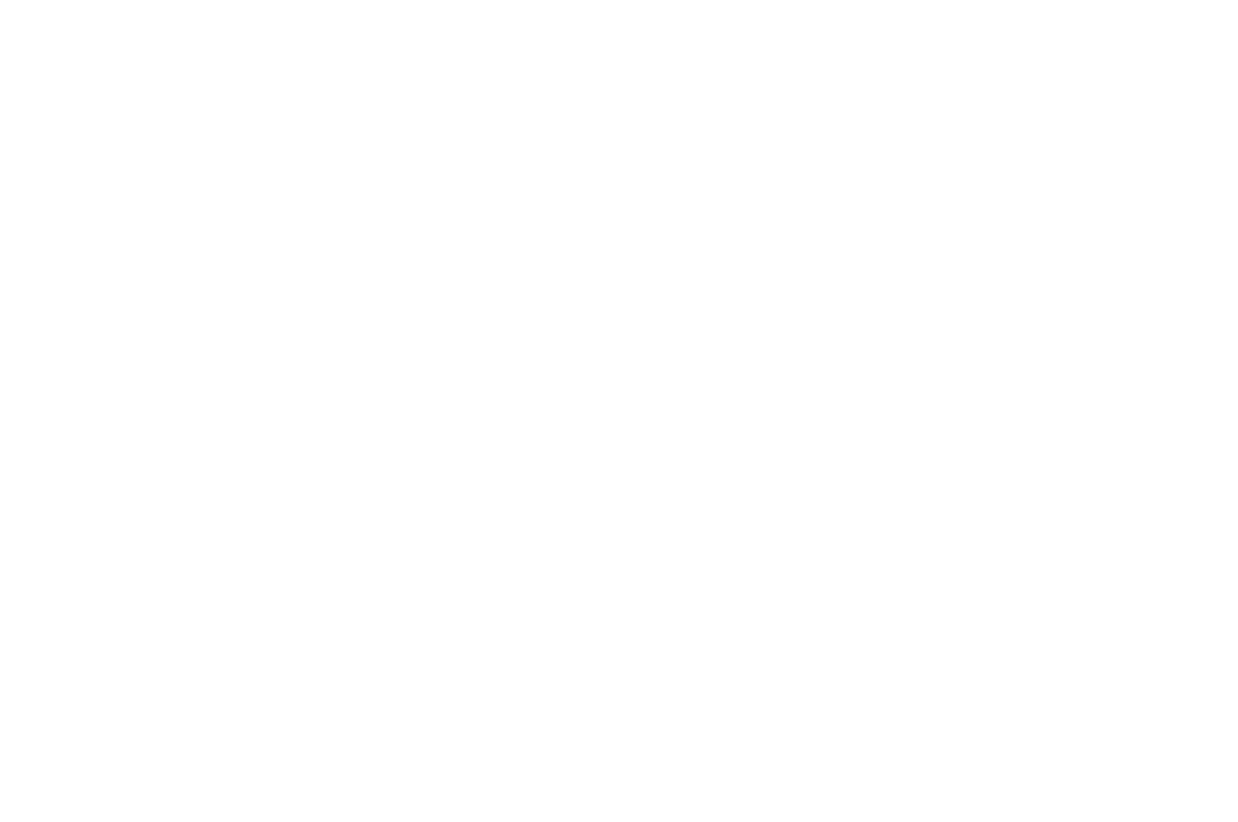 FINALIST - The Palm Springs International Comedy Festival - 2018.png