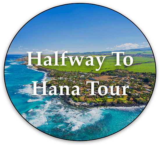 Halfway To Hana Tour By Local Maui Tours