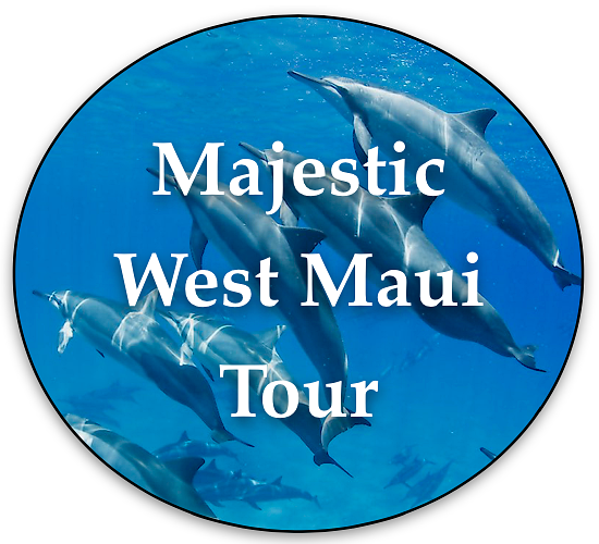 Majestic West Maui Tour local maui tours tour button