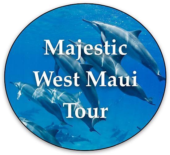 west-maui-private-tour