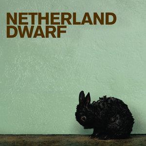 Netherland Dwarf