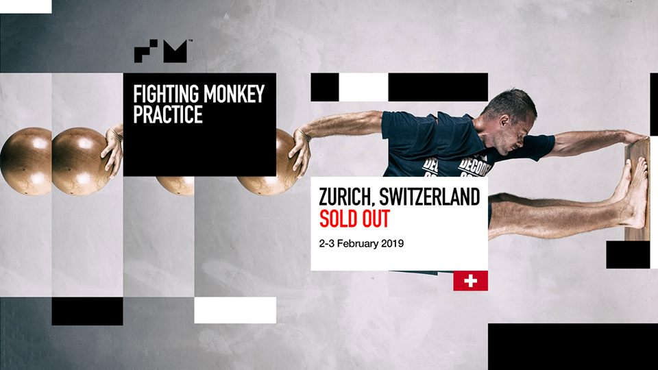 fighting monkey zurich