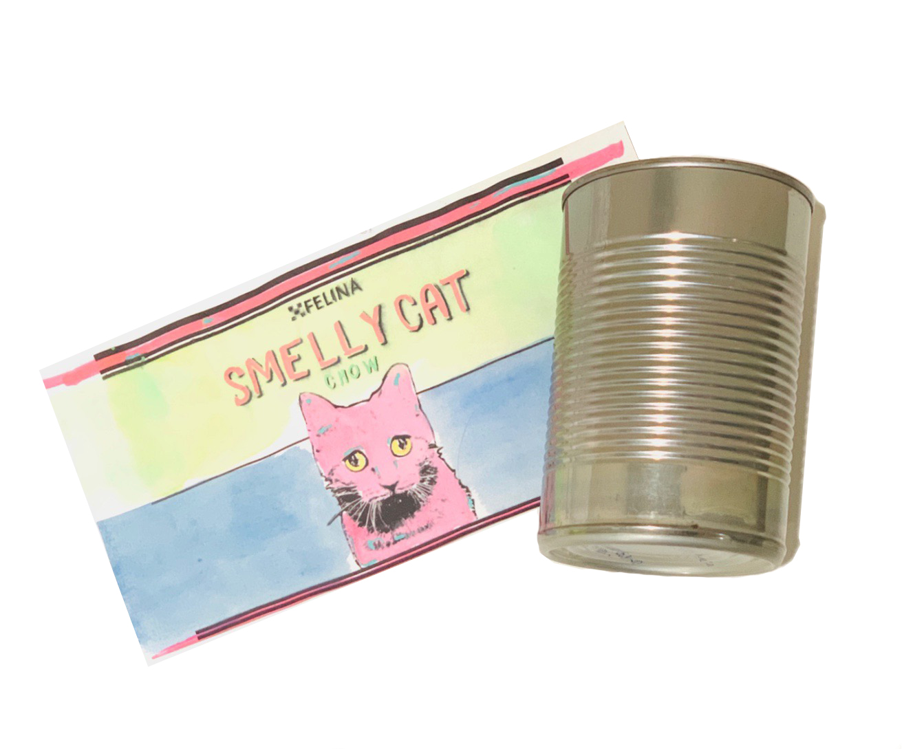 "DIY: ""SMELLY CAT"" POP ART CAN"