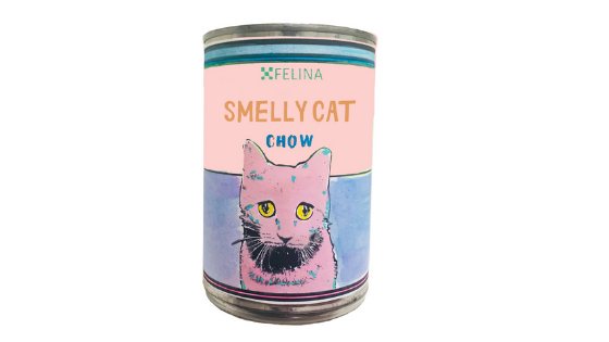 DIY: SMELLY CAT POP ART CAN!