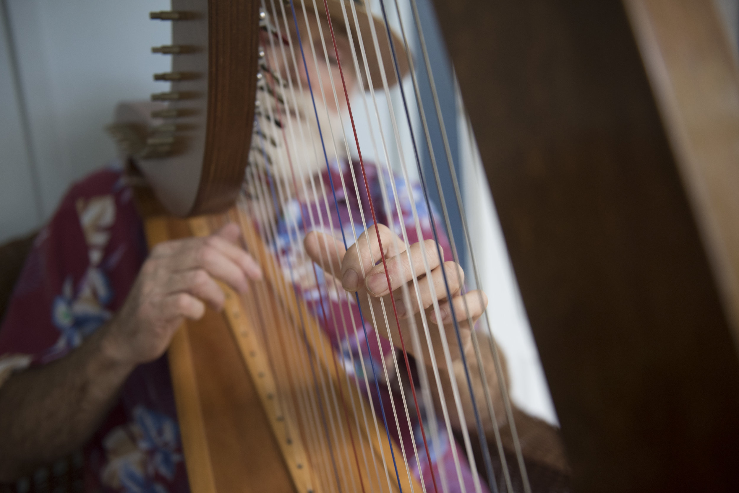 Pat McGee strums his harp outside his home in Athens, Ohio on Sept. 3, 2017. McGee often can be spotted around Athens playing his harp, usually with a small crowd watching.