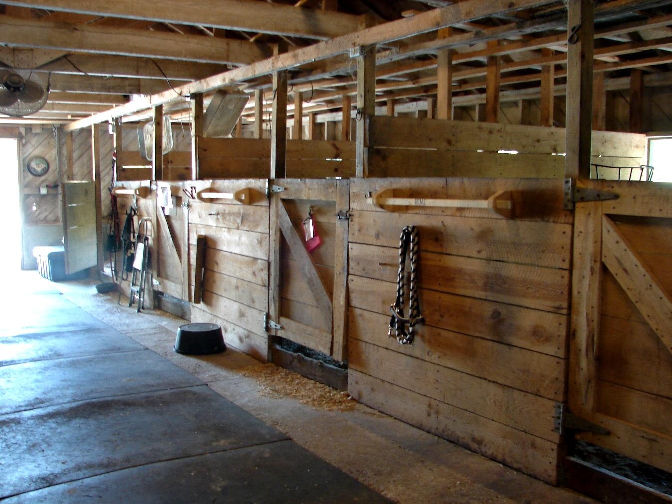 Nice stalls inside the barns.JPG