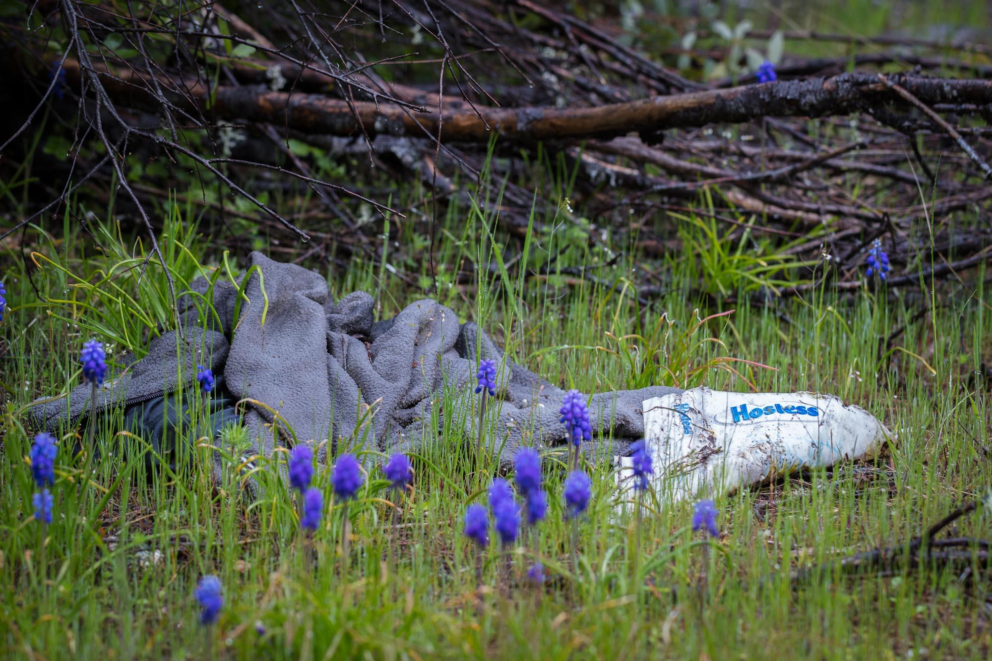 Murphy Creek 01.jpg