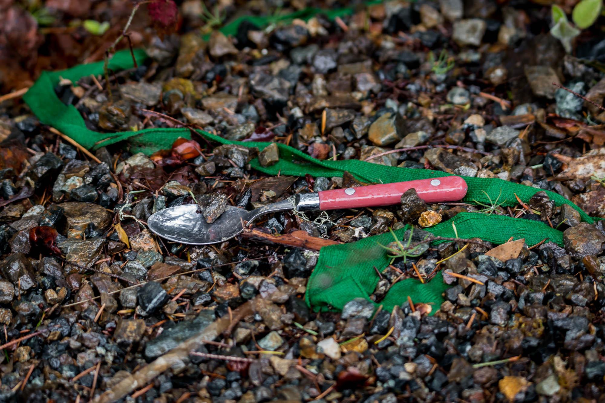 Spencer Creek 01.jpg