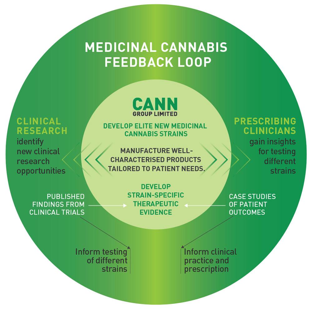 CANN_Feedback_Loop.jpg