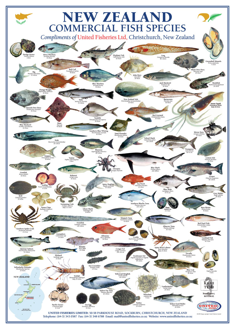 species_all.jpg
