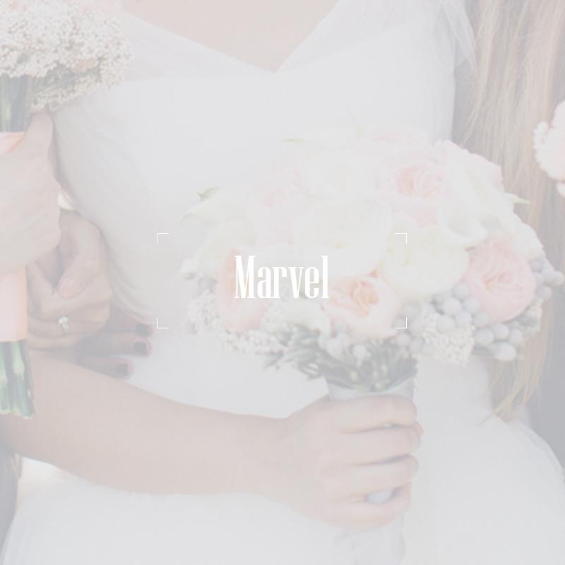 marvel-genesis-wedding