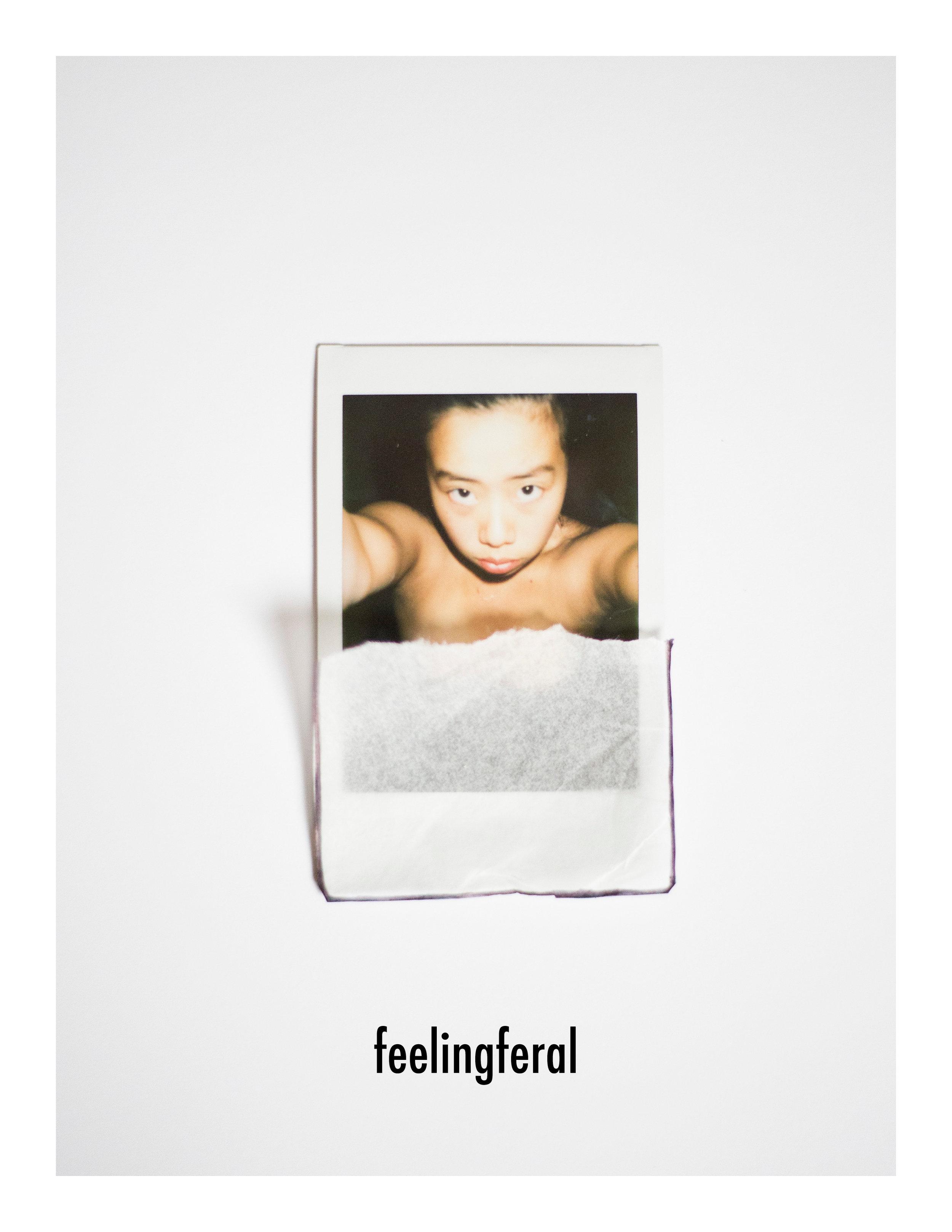feelingferalspread1.2.jpg