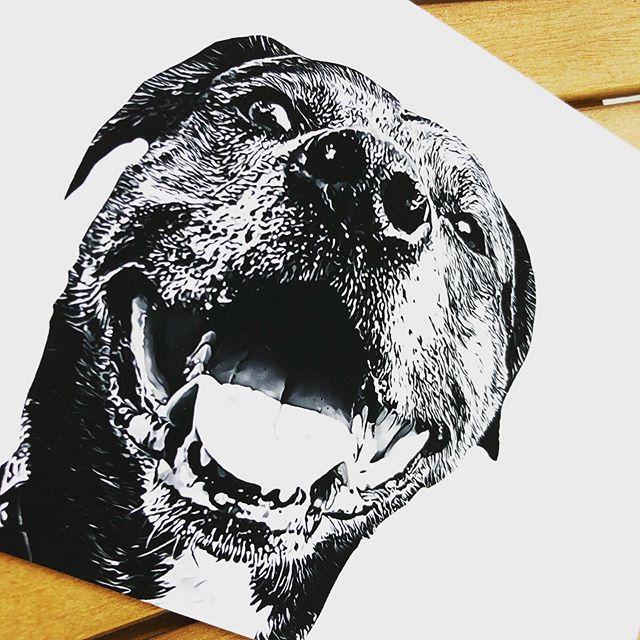 Woof! #petportrait