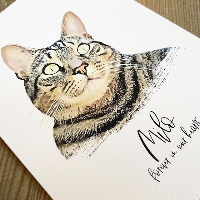 Cats for the win! #petportrait