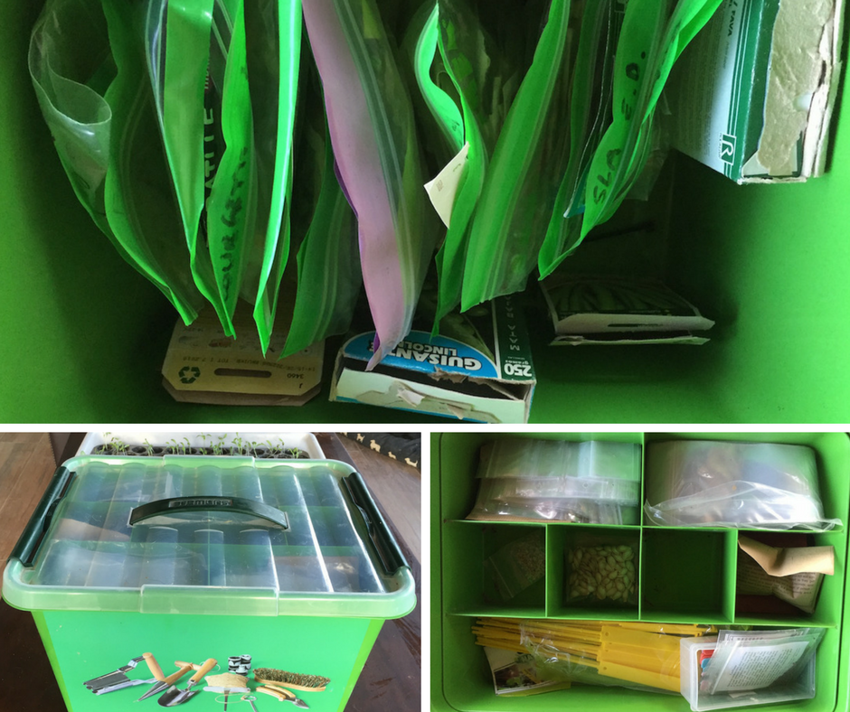 """My """"seed toolbox"""": it has space for labels and small stuff on top, and underneath that there's all my ziplock bags of seeds."""