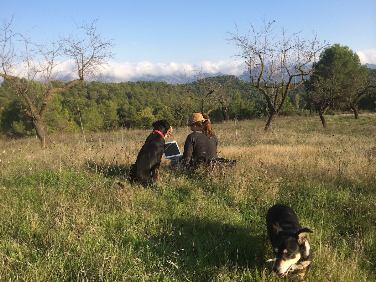 I can work anywhere, anytime. With the help of farm dogs Jabba & Jinx, of course.