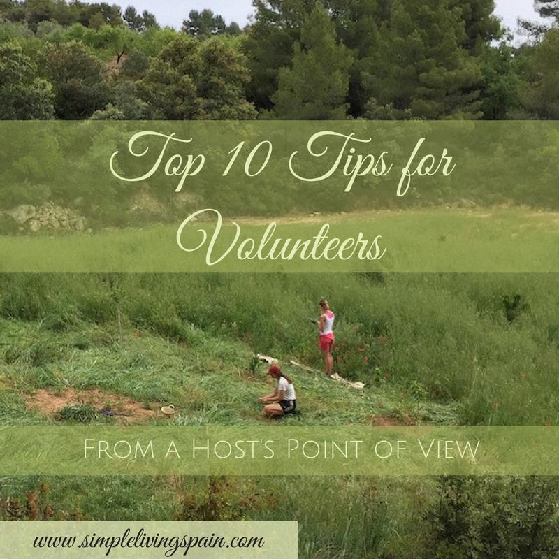 tips_volunteers_simplelivingspain.com