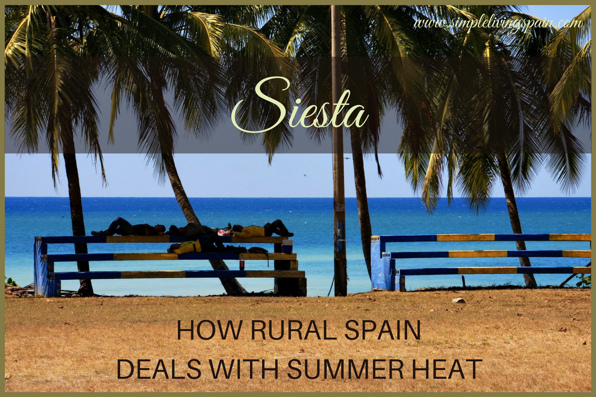 Siesta   How rural Spain deals with summer heat   Simple Living in Spain