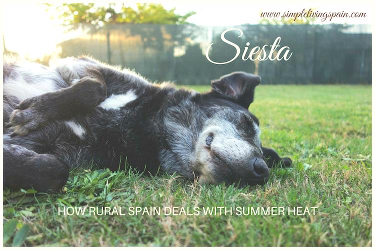 Siesta   How rural Spain handles summer heat   Simple Living in Spain